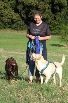 Harmonischer Spaziergang mit zwei Hunden
