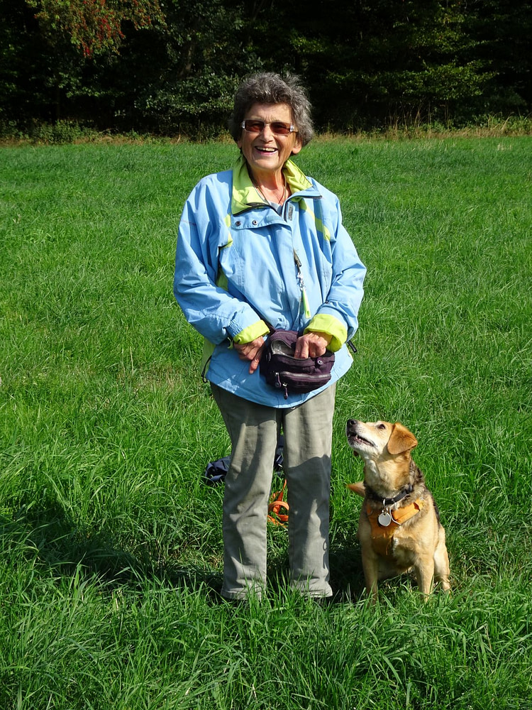 Hundetraining mit positiver Verstärkung